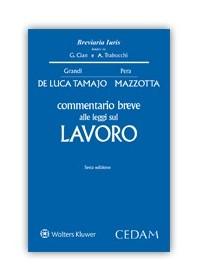 Commentario Breve alle Leggi sul Lavoro di De Luca Tamajo, Mazzotta