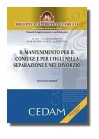 Il Mantenimento Per Il Coniuge E Figli Nella Separazione E Nel Divorzio di De Filippis, Buonadonna, Schettini, Ricci, Pini