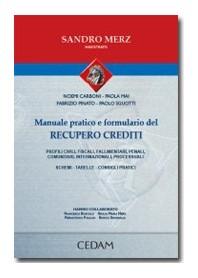 Manuale Pratico E Formulario Del Recupero Crediti di Merz