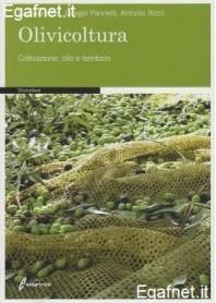 Olivicoltura di Barbara Alfei, Giorgio Pannelli, Antonio Ricci