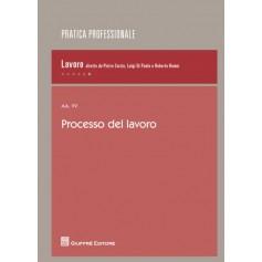 Processo del Lavoro di Costantino, Curzio, Dalfino, De Santis, Gentile, Majorano, Liuzzi