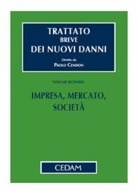 Trattato Breve Dei Nuovi Danni Vol. II: Impresa, Mercato, Società di Cendon