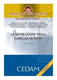 La Separazione Nella Famiglia Di Fatto di De Filippis, Zambrano, Starita, Di Marco, Lettieri, De Filippis