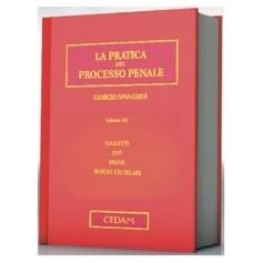Pratica Del Processo Penale Vol. III - Soggetti, Atti, Prove, Misure Cautelari di Spangher