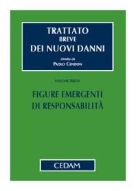 Trattato Breve Dei Nuovi Danni Vol. III: Figure Emergenti Di Responsabilità di Cendon