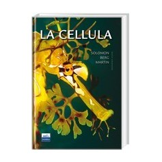 La Cellula di Solomon, Berg, Martin
