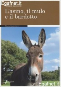 Asino, Il Mulo E Il Bardotto di Raffaele Baroncini