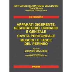 Apparati Digerente, Respiratorio, Urinario e Genitale - Cavita' Peritoneale, Muscoli e Fasce del Perineo di Orlandini