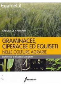 Graminacee, Ciperacee Ed Equiseti Nelle Colture Agrarie di Pasquale Viggiani