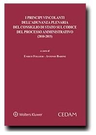 I Principi Vincolanti dell'Adunanza Plenaria del Consiglio di Stato sul Codice del Processo Amministrativo (2010-2015) di Follie