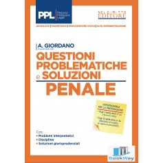 questioni problematiche e soluzioni -penale-