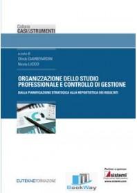 organizzazione dello studio professionale e controllo di gestione