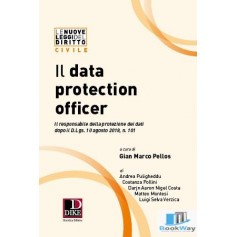 il data protection officer (dpo)