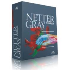 Netter Gray L'Anatomia la chiarezza e il Fascino dell' Anatomia di Netter, Standring, Gray