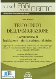 testo unico dell'immigrazione