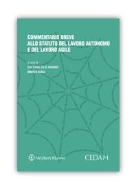 Commentario Breve allo Statuto del Lavoro Autonomo e del Lavoro Agile di Zilio Grandi, Biasi