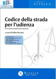 codice della strada per l'udienza