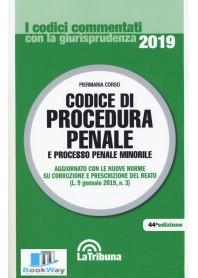 codice di procedura penale e processo penale minorile 2019