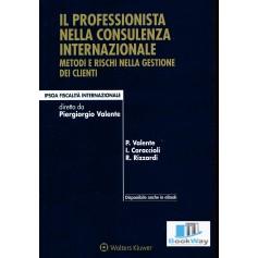 professionista nella consulenza internazionale (il)