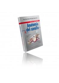 Atlante di Anatomia del Cavallo di Budras, Sack, Röck