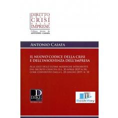 nuovo codice della crisi e dell'insolvenza dell'impresa