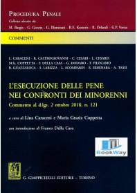 ESECUZIONE DELLE PENE NEI CONFRONTI DEI MINORENNI (L')