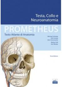 Prometheus Atlante di Anatomia Testa, Collo e Neuroanatomia di Schüenke, Schulte, Schumacher