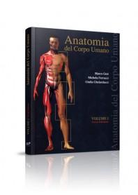 Anatomia del Corpo Umano vol 1 di Gesi, Ferrucci, Ghelarducci