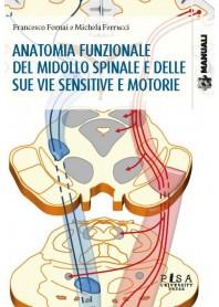 Anatomia Funzionale del Midollo Spinale e delle sue Vie Sensitive e Motorie di Fornai, Ferrucci