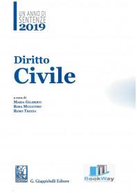 2019. un anno di sentenze. diritto civile