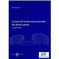 lezioni di tutela internazionale dei diritti umani