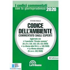 codice dell'ambiente 2020
