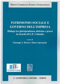 patrimonio sociale e governo dell'impresa