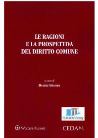 ragioni e la prospettiva del diritto comune (le)