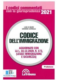 codice dell'immigrazione 2021 - commentati