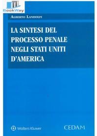 sintesi del processo penale negli stati uniti d'america