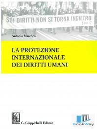 protezione internazionale dei diritti umani (la)