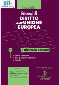 schemi di diritto dell'unione europea