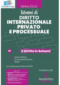 schemi di diritto internazionale privato e processuale