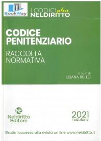 codice penitenziario 2021. raccolta normativa