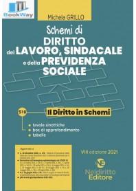 schemi di diritto del lavoro, sindacale e previdenza sociale