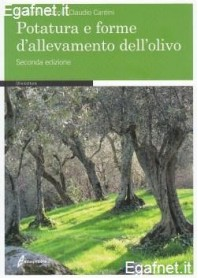 Potatura E Forme D'Allevamento Dell'Olio di Riccardo Gucci, Claudio Cantini