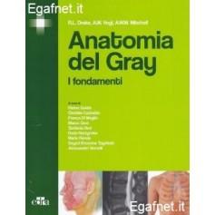 Anatomia Del Gray di R.L. Drake, A.W. Vogl, A.W.M. Mitchell