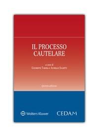 Il Processo Cautelare di Saletti, Tarzia