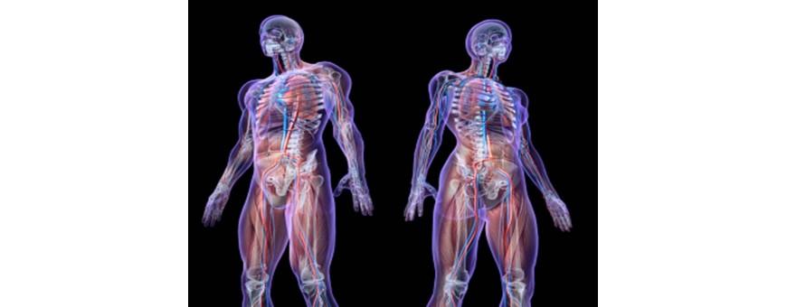 Anatomia e Istologia Patologica