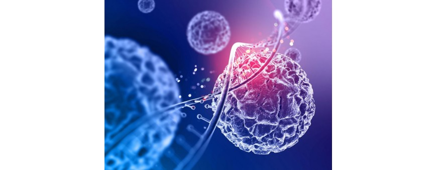 Biologia e Microbiologia