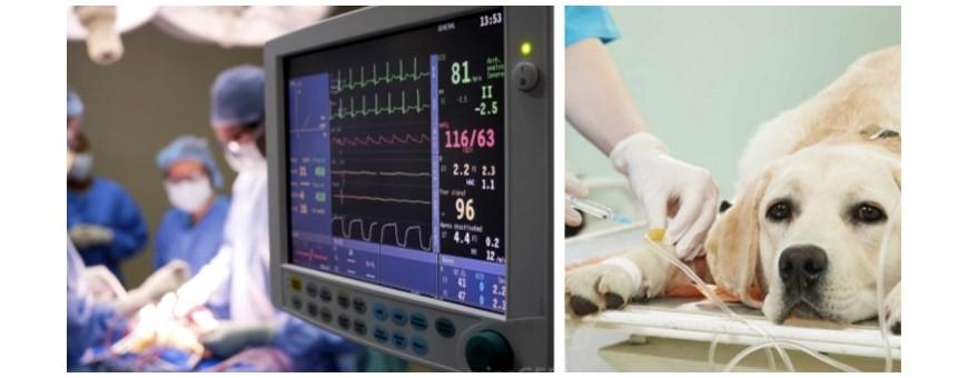 Veterinaria - Anestesia Terapia Intensiva e Rianimazione