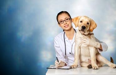 Testi di Veterinaria.jpg